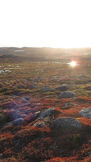 The sunlight is bright in Iqaluit