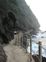The coastal walk