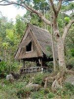 Uma ncuhi, village head's house