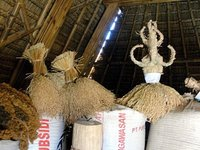 Food storage in an 'uma lengge'