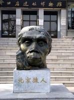 Zhoukoudian Site Museum