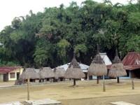 Bhaga and Ngadha of Mari