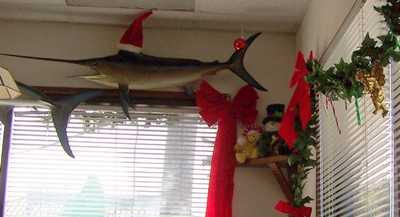 Mounted fish and Xmas decorations