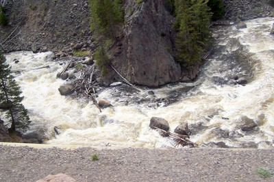 Bank of the Firehole River