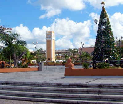 Town square with clock and Christmas tree