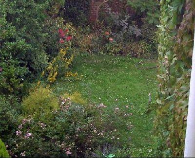 2892683-Back_garden_Cheltenham.jpg