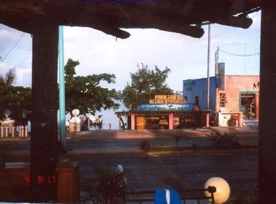 3172212-Dive_shop_from_the_cafe_Isla_Cozumel.jpg