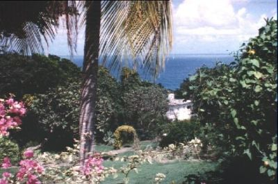 3441060-Welshman_Hall_Gully_Barbados.jpg