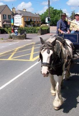 3549852-Horse_and_Cart_following_us_Killarney.jpg