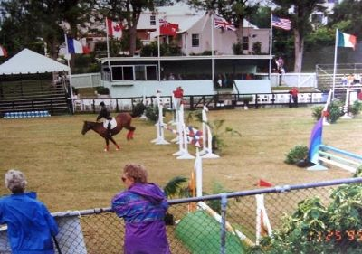 International Show Jumping Competition