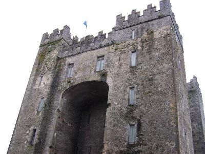 368428383536940-Looking_up_a..e_Bunratty.jpg