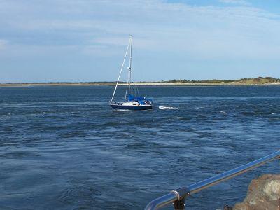 378250297213821-Sailboat_ent..egat_Light.jpg