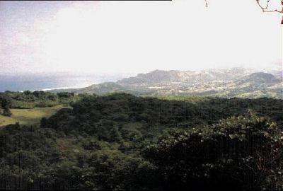 42181372239948-Scenery_from..l_Barbados.jpg