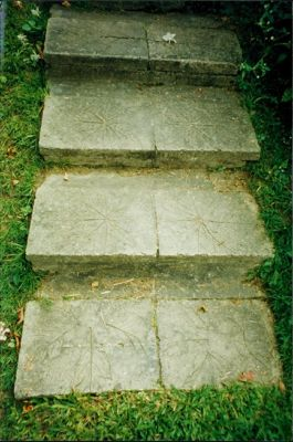 Steps with leaf prints