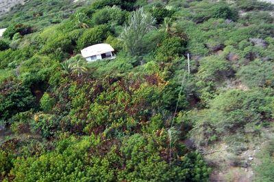 House among the trees - Montserrat