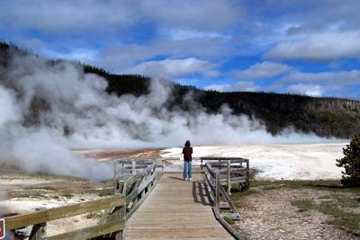 4910759-My_grandson_Yellowstone_National_Park.jpg