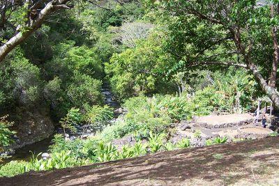523145417505662-Plantation_a..ve_Wailuku.jpg