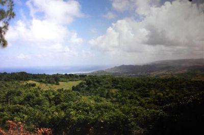 Coastal Views from Cherry Tree Hill