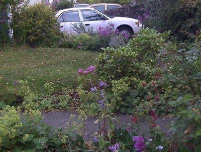 Son-in-law's car in driveway