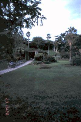Gardens at dusk in 1995