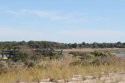 7217029-Cape_May_Point_State_Park.jpg