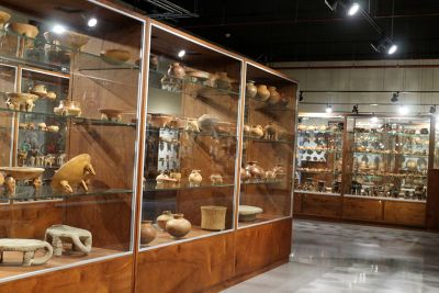 Hall 6 - Visitable Collection