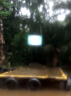 No TV - this is jungle sign