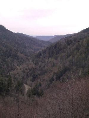 Great Smoky Mountains in the Winter
