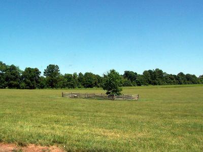 Mercer Oak/Princeton Battlefield