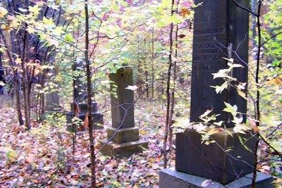 Graves in the woods