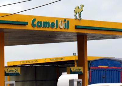 Camel Oil station