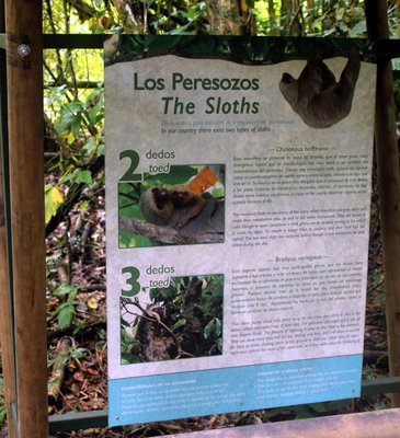 Sign about Sloths