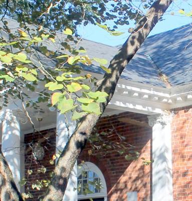 Original roof line under the portico