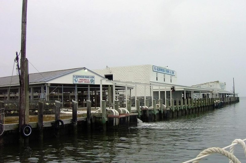 Crab houses