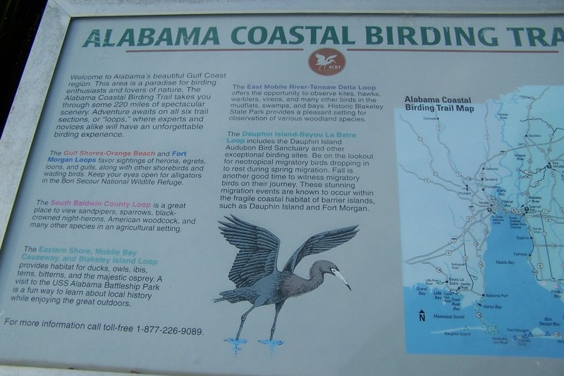 Alabama Coastal Birding Trail