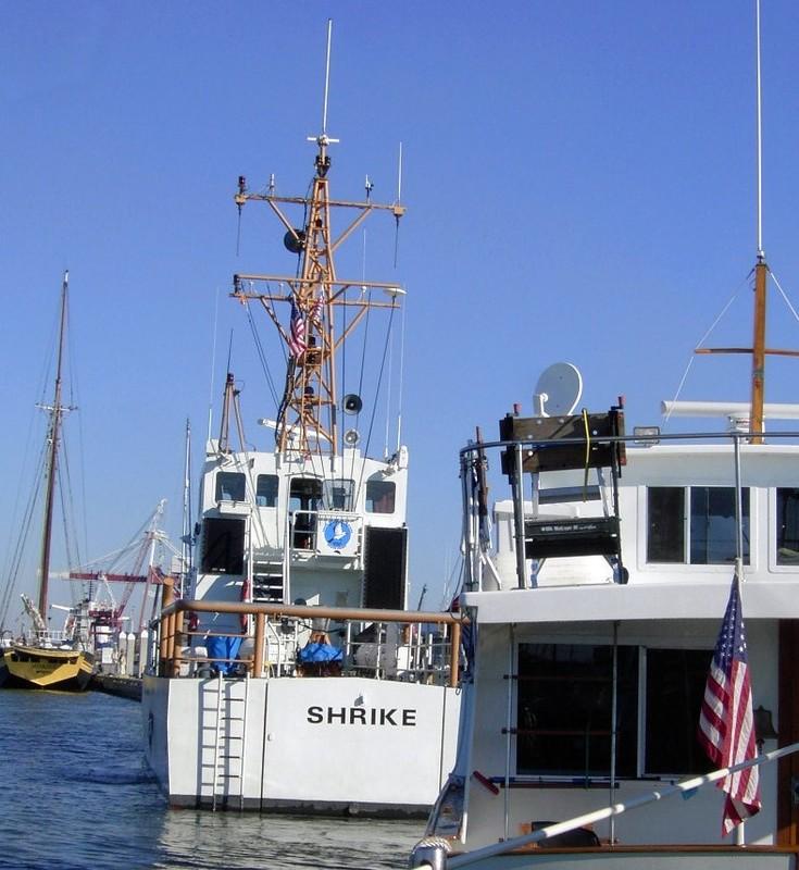 Coast Guard boat SHRIKE