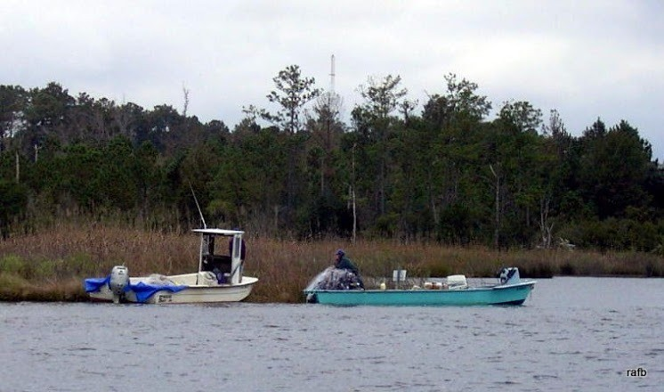 Folks in small boats casting nets