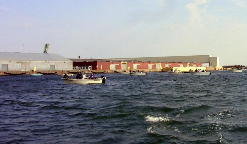 Fishermen in the turning basin