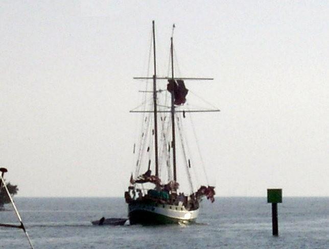 One of the big schooners