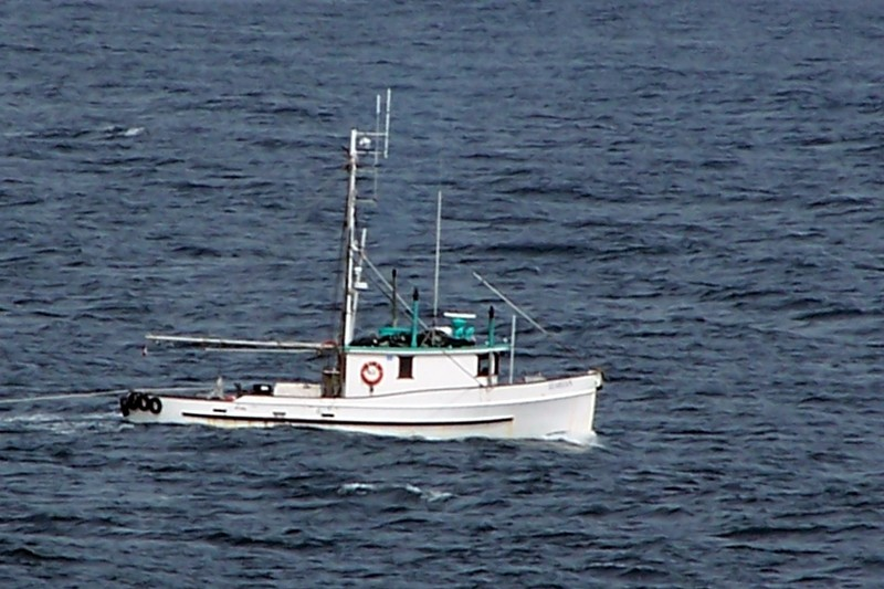 Boat in the Queen Charlotte strait
