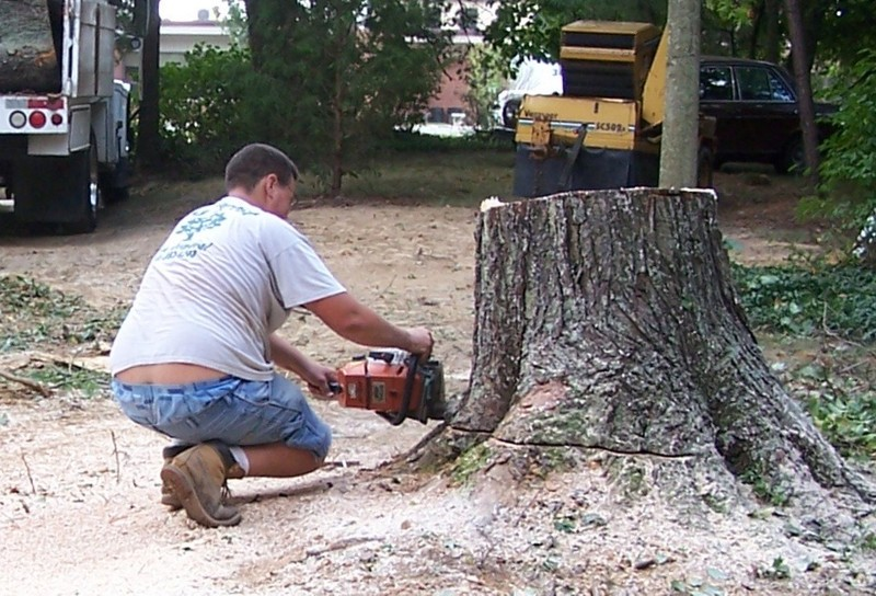 Cutting off the stump