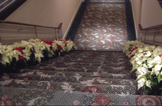 Hotel stairs flanked by poinsettias