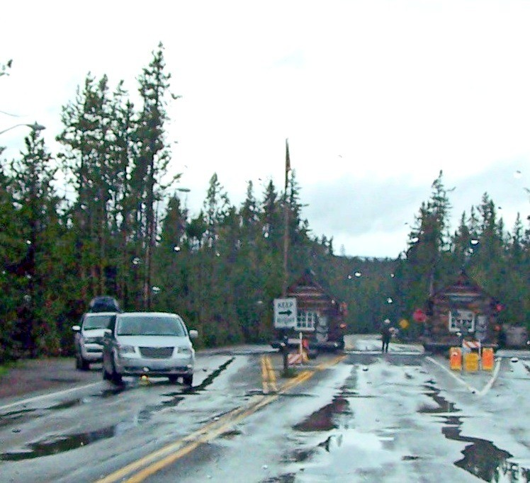Back to Yellowstone in the rain