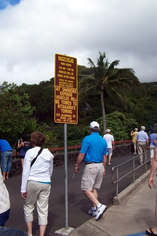 Walking up to the bridge