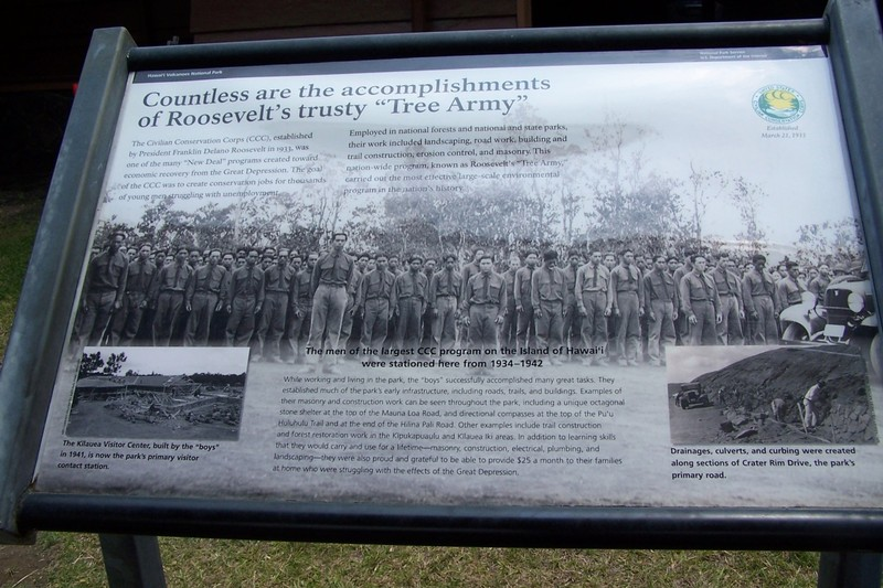 Roosevelt's Tree Army (CCC)