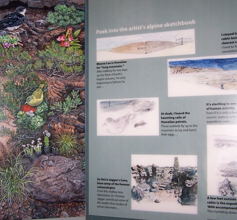 Alpine ecosystem