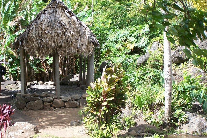 Plantation as old Hawaiians would live