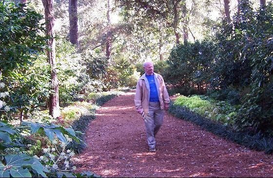 Bob walking down a shady path