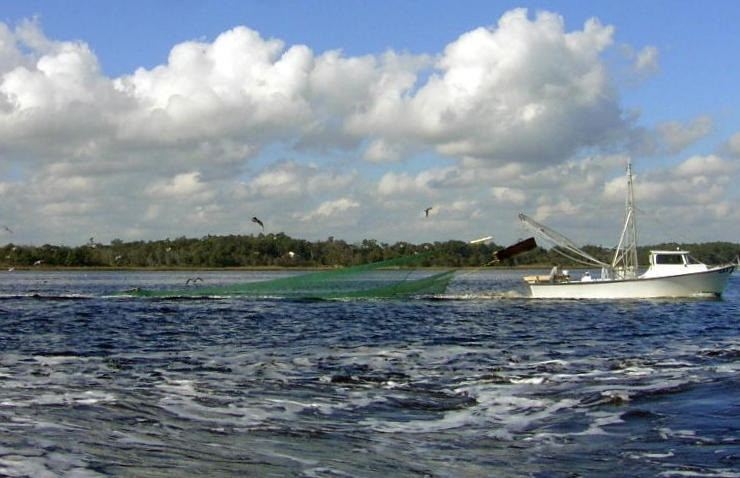 Shrimp boat trolling with a green net