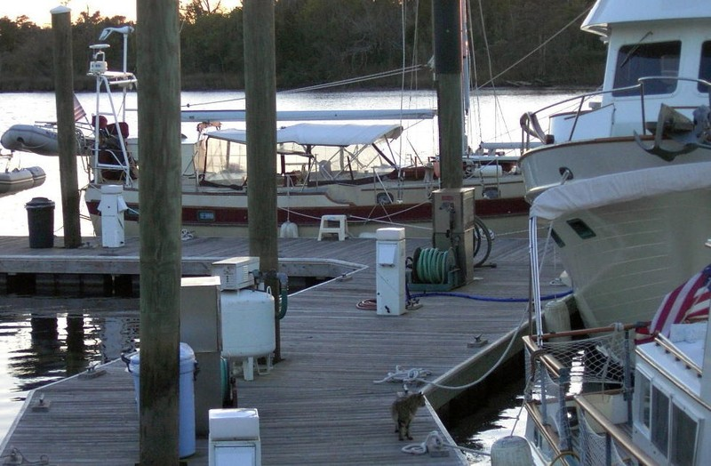 At the dock in the Boat Shed